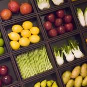 ויטמין B12 ממקור צמחי