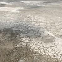 מלח ים