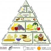 אבות המזון