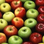 חומץ תפוחי עץ